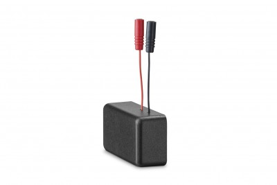 Primary Battery Ant